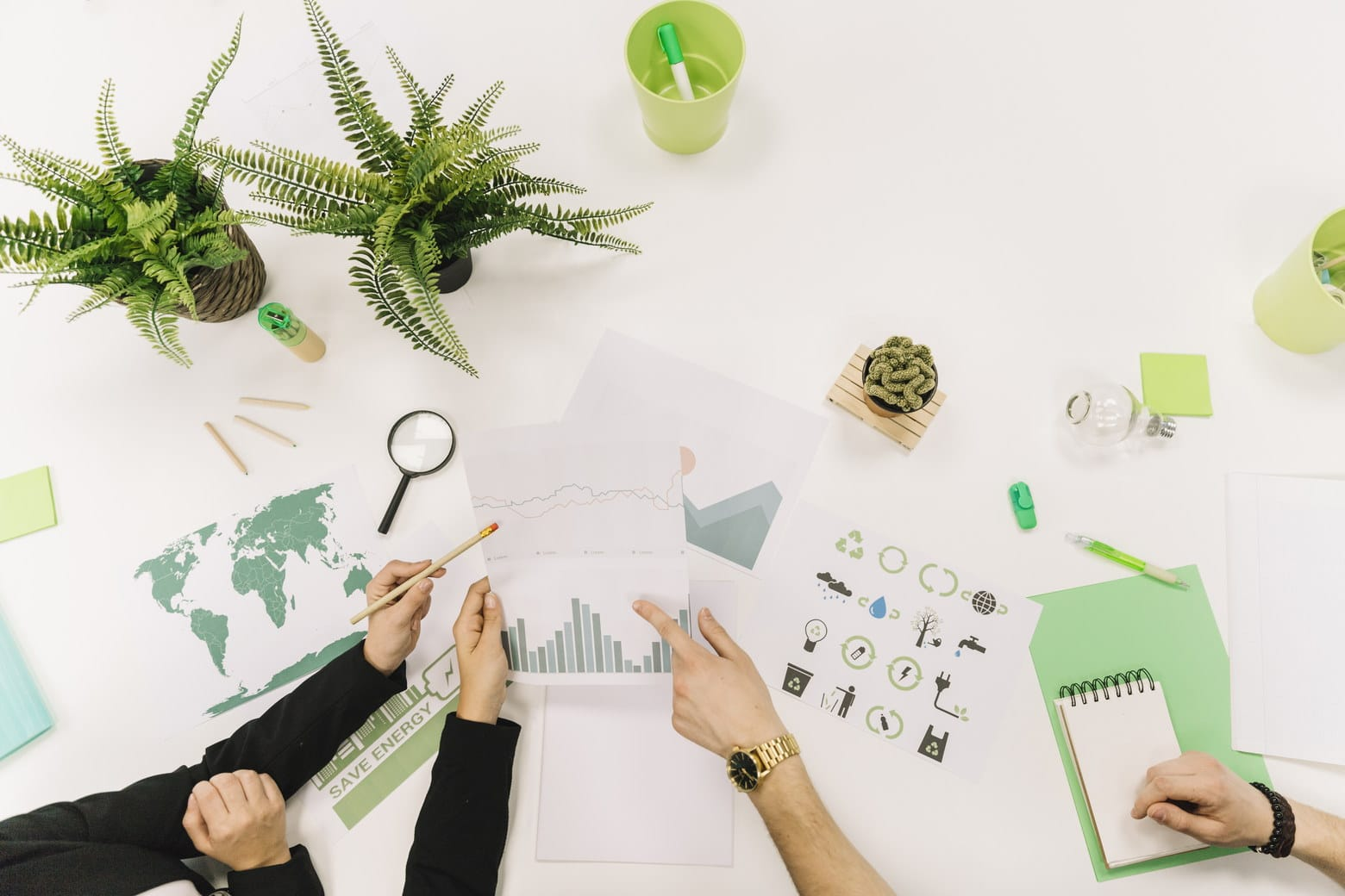 sustainable business growth
